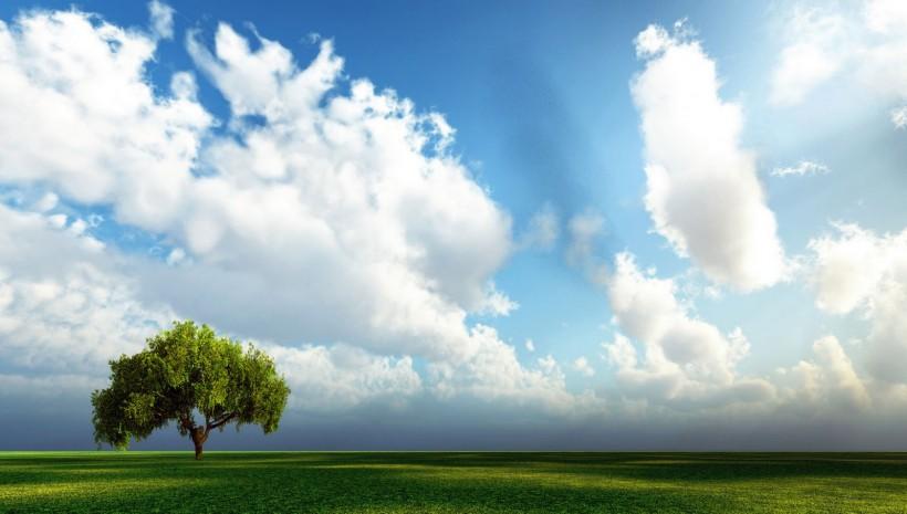 Céu X Paraíso: a Revelação!